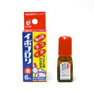 Ibokorori Nhật Bản